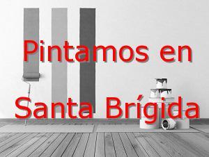 pintor LAs Palmas Santa Brígida